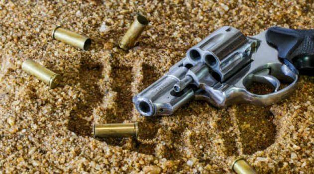 gun-800x445
